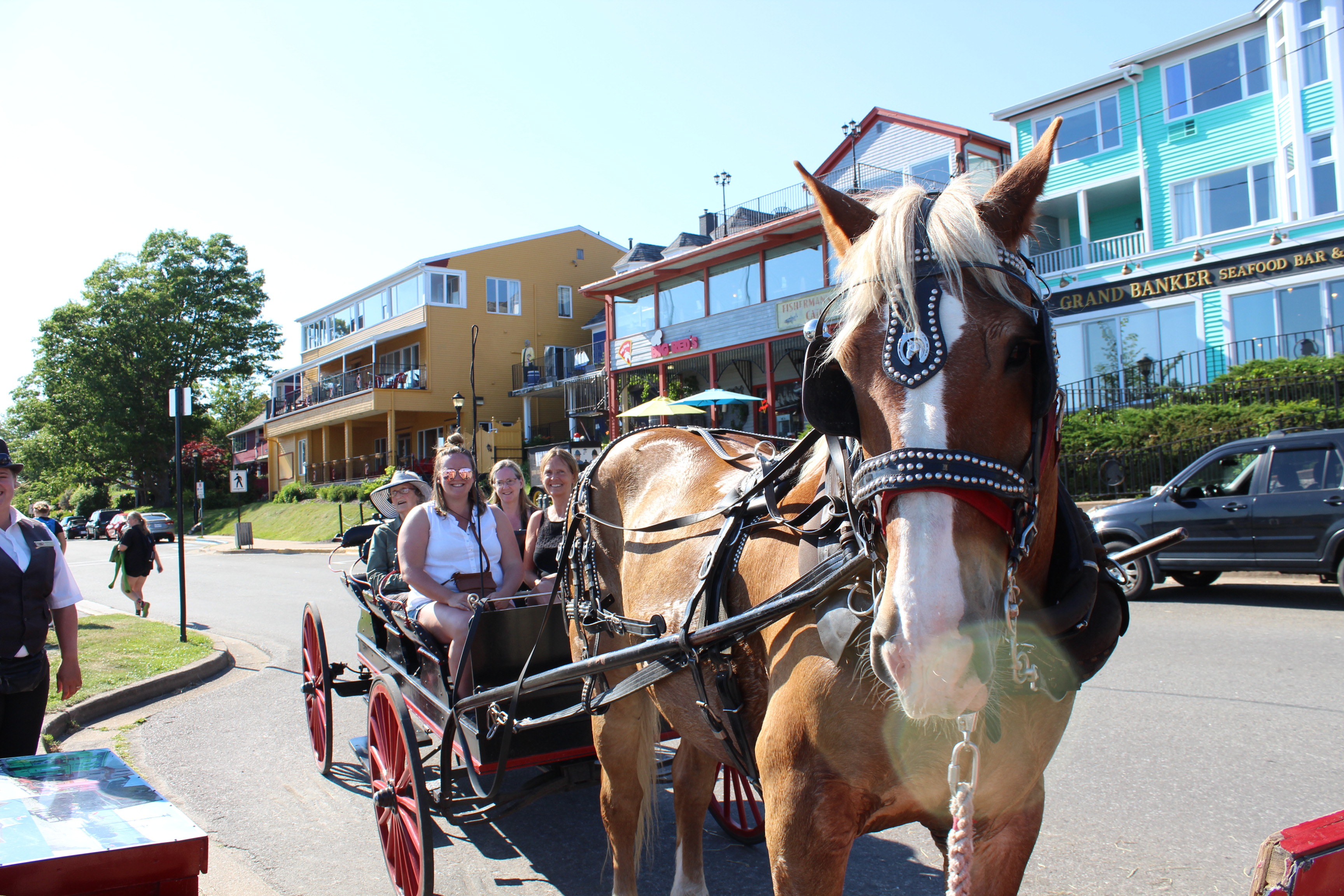 historic Lunenburg tours to trot
