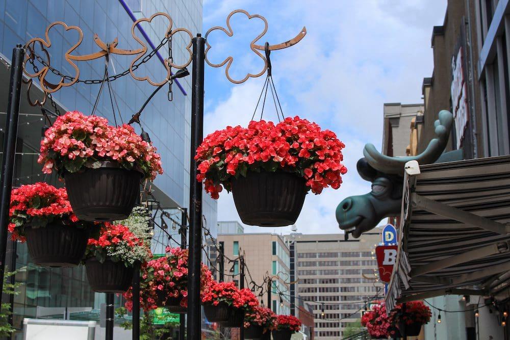 Patios in Halifax Nova Scotia