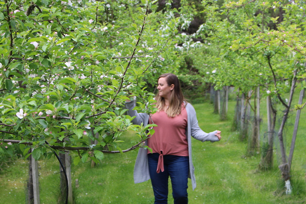 Magdalen Islands Food Trail Orchard