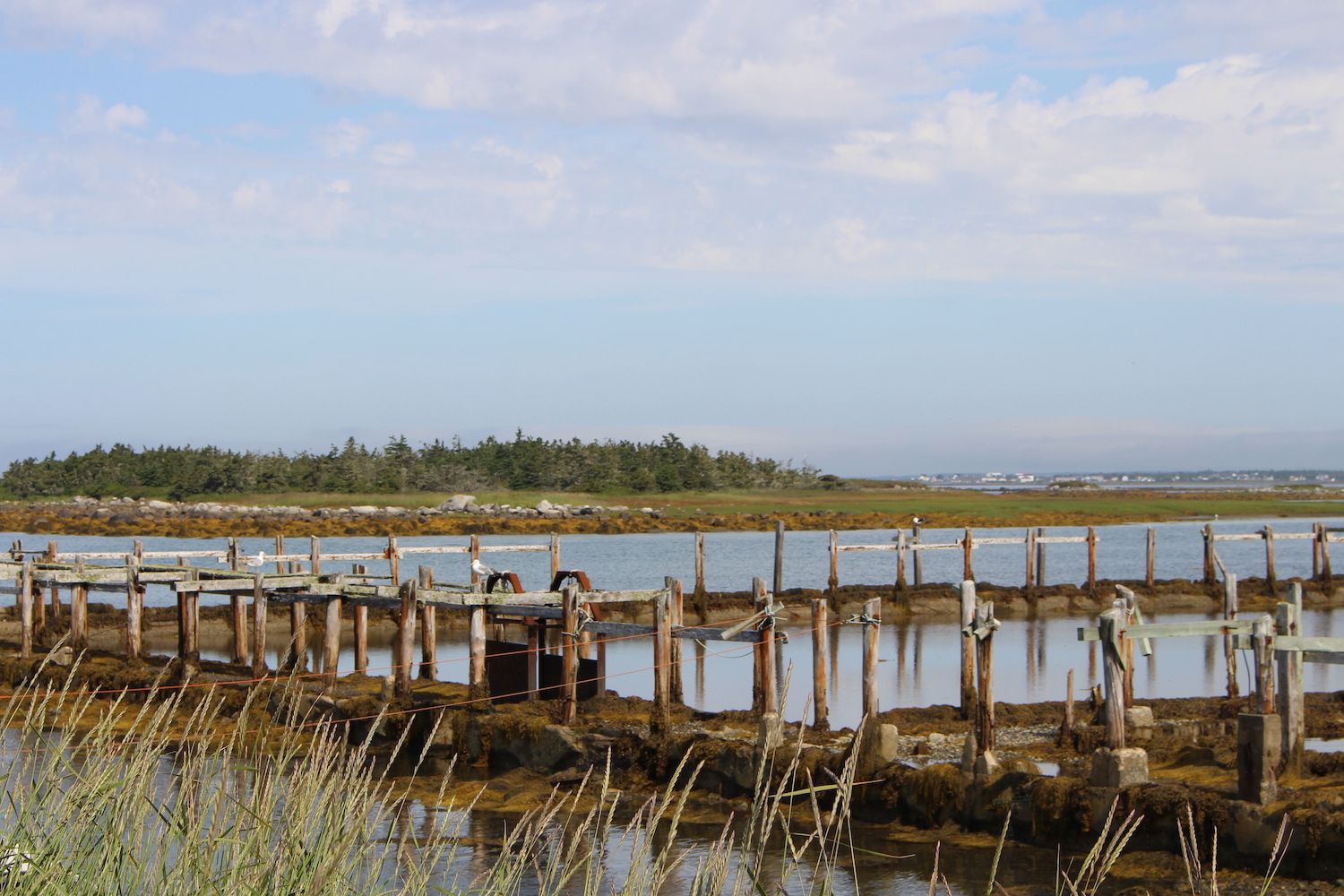 Cape Sable Island Nova Scotia