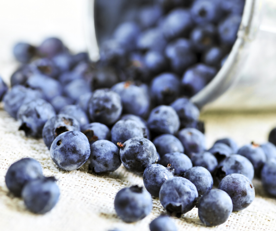 Canadian Wild Blueberries