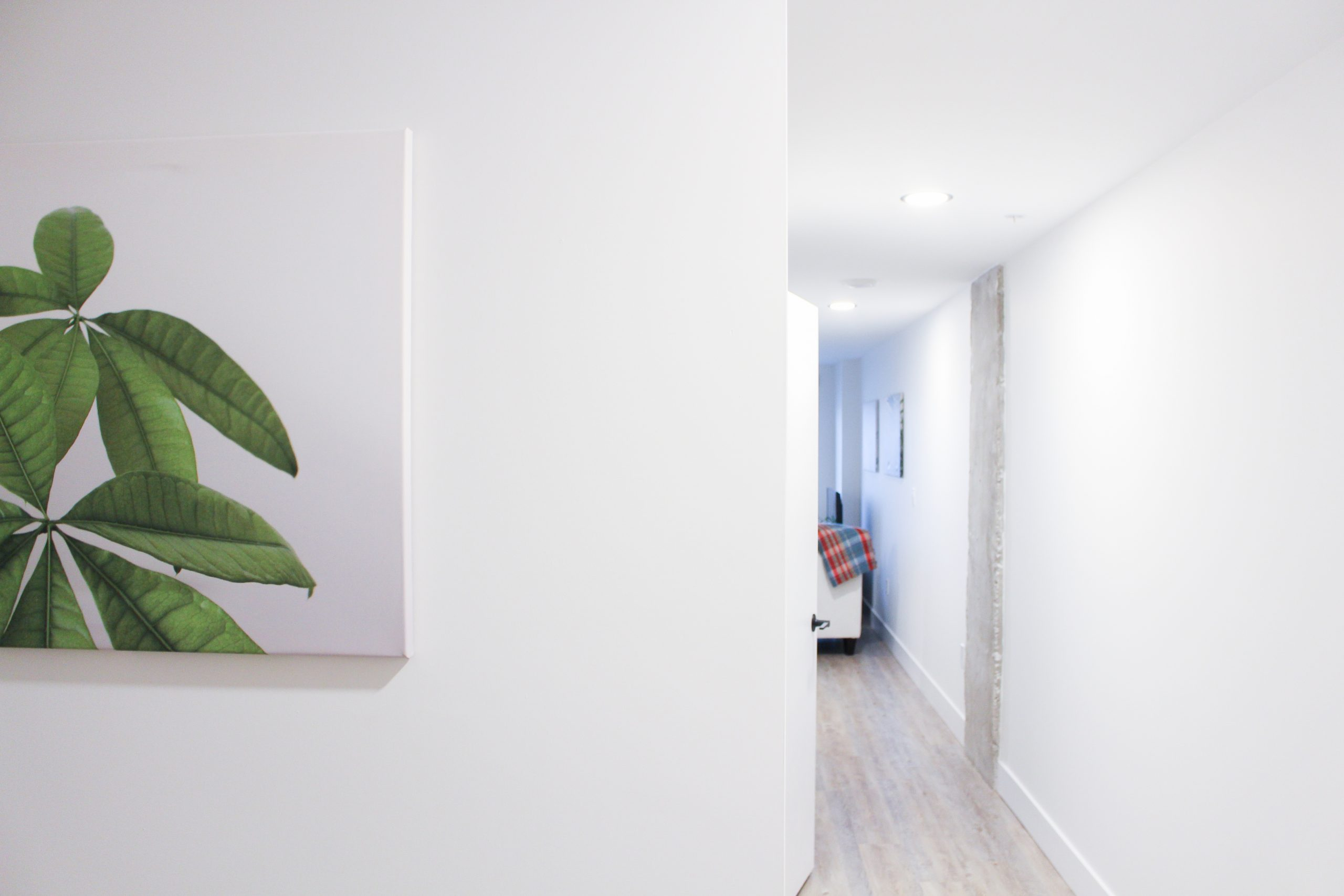 canvas plant prints