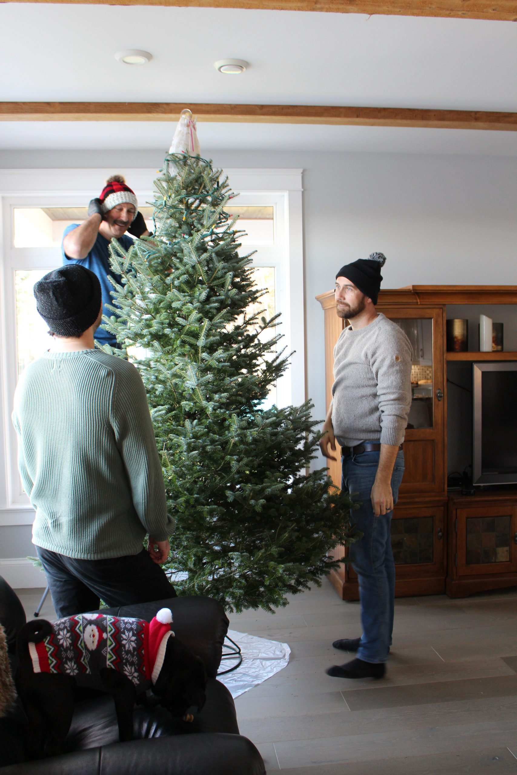 Christmas Tree Traditions for Couples
