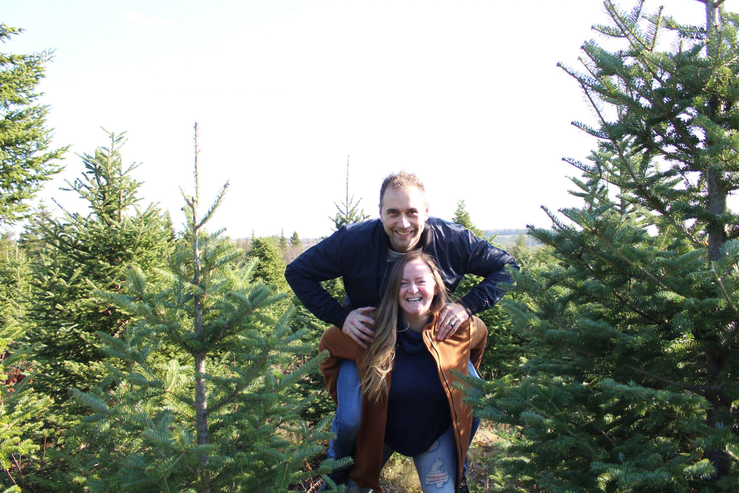 Christmas Tree Farms Nova Scotia