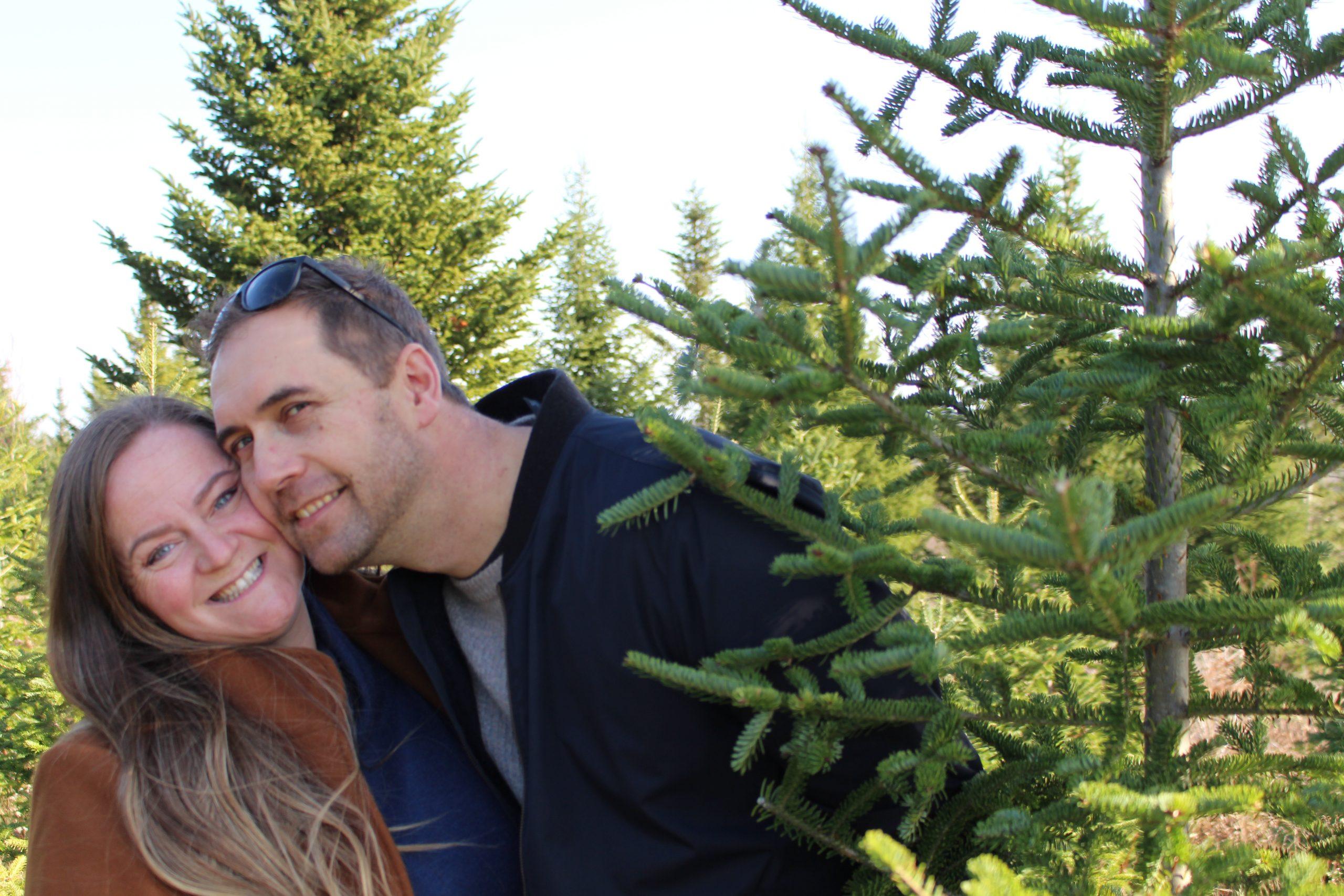 Nova Scotia Christmas Tree Farms