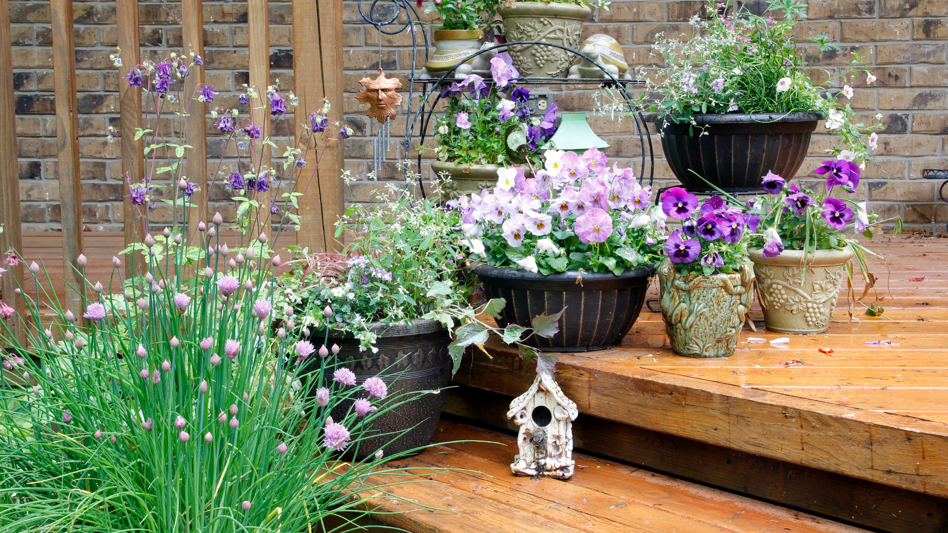 Ultimate Guide to Container Gardening