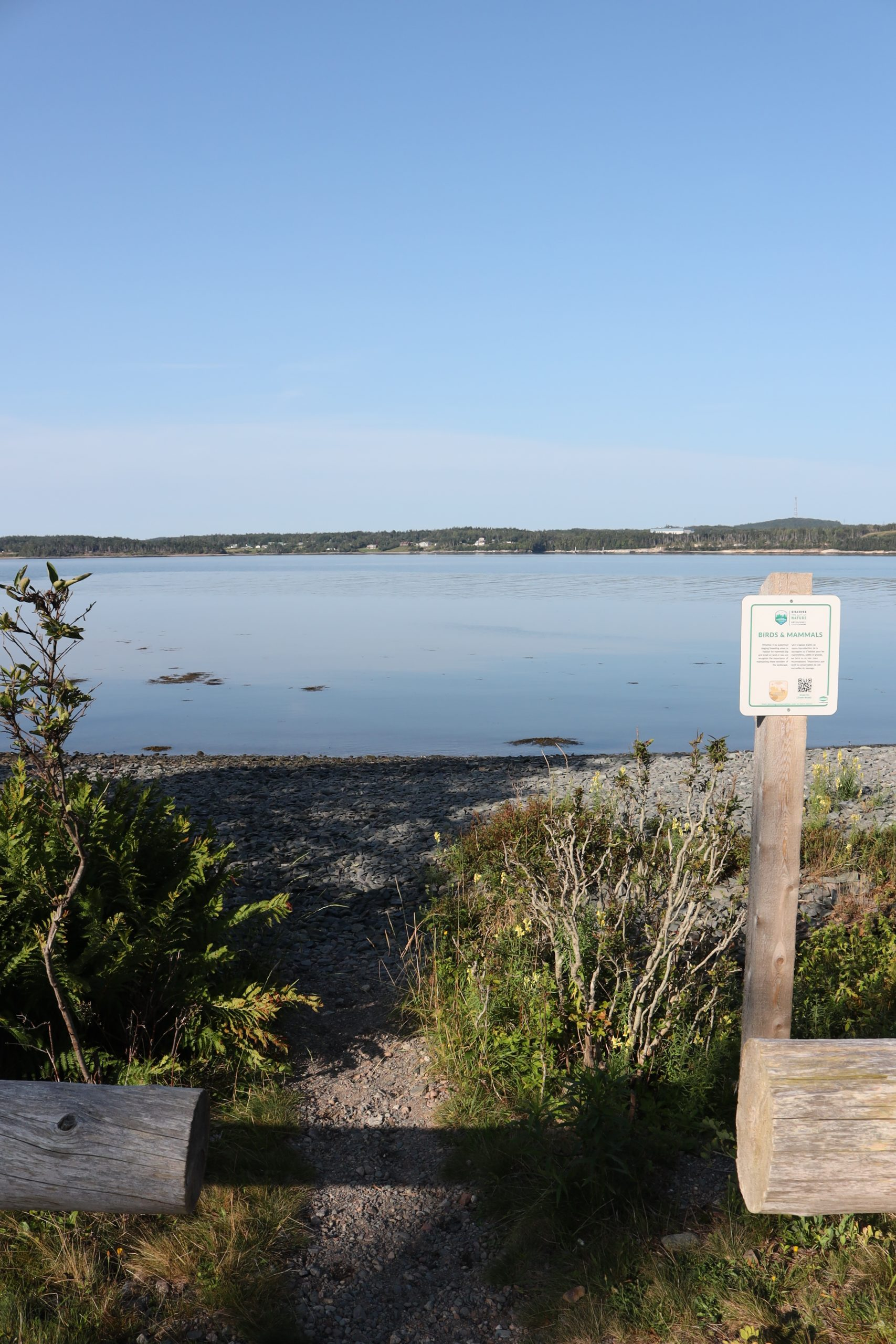 Irving Nature Park Saint John Nova Scotia to New Brunswick road trip