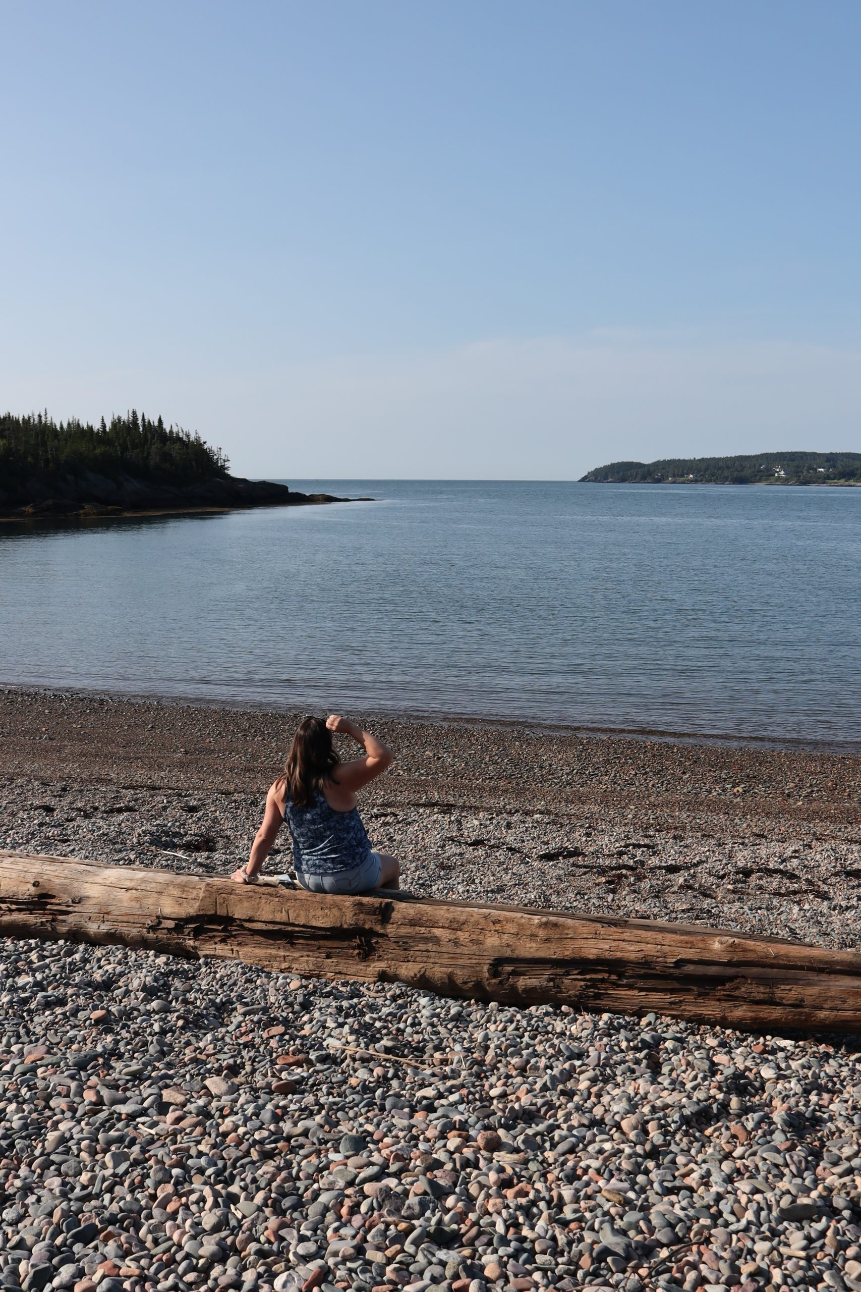 Irving Nature Park Saint John